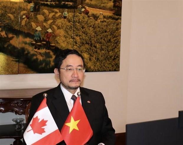 Destacan potencialidades en desarrollo de nexos Vietnam-Canada hinh anh 1