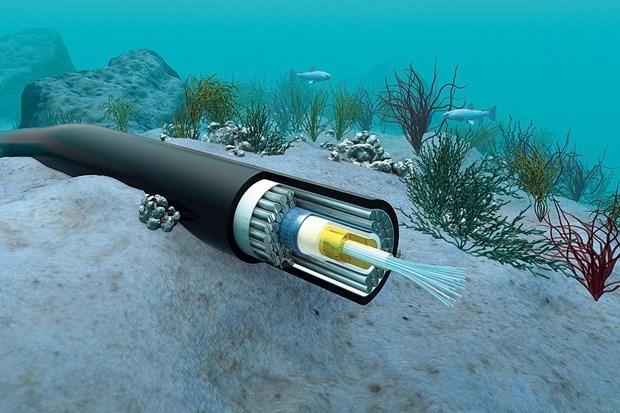 Finalizaran pronto reparacion de cables submarinos de internet de Vietnam hinh anh 1
