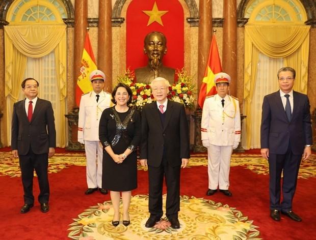 Maximo dirigente de Vietnam aboga por incrementar lazos con otros paises hinh anh 1