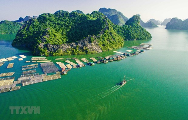Archipielago vietnamita opta por desarrollo de turismo verde y sostenible hinh anh 1