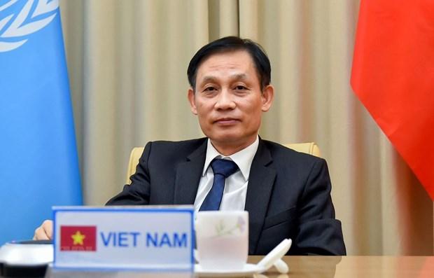 Proteccion de intereses nacionales de Vietnam aportara al mantenimiento de la paz y seguridad internacional hinh anh 1