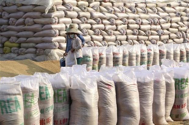 Provincia vietnamita de Kien Giang ingresa fondo millonario por exportaciones en enero hinh anh 1