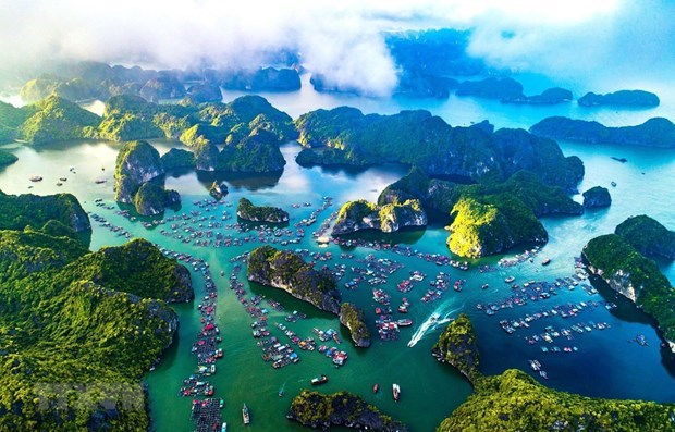 Vietnam completa documentos para solicitar reconocimiento de zona Ha Long-Cat Ba como patrimonio mundial hinh anh 1