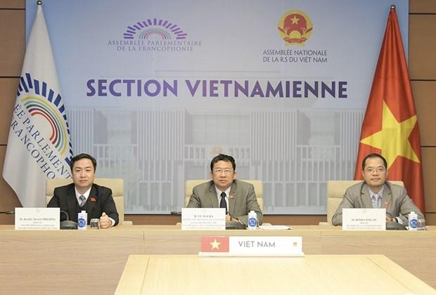 Vietnam insta a coordinacion de organizaciones francofonas para aliviar impactos del COVID-19 hinh anh 1