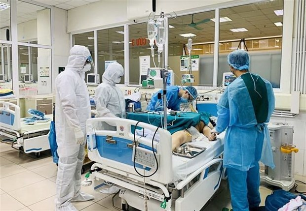 Debaten medidas de tratamiento adecuadas para los pacientes del COVID-19 en estado critico hinh anh 1