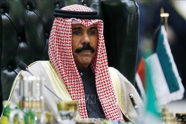 Emir de Kuwait enaltece alcances de Vietnam hinh anh 1
