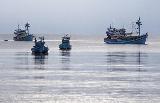 Provincia vietnamita fortalece la gestion de embarcaciones pesqueras hinh anh 1