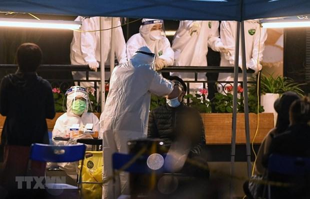 Vietnam reporta otros 19 casos de COVID-19 en la comunidad hinh anh 1