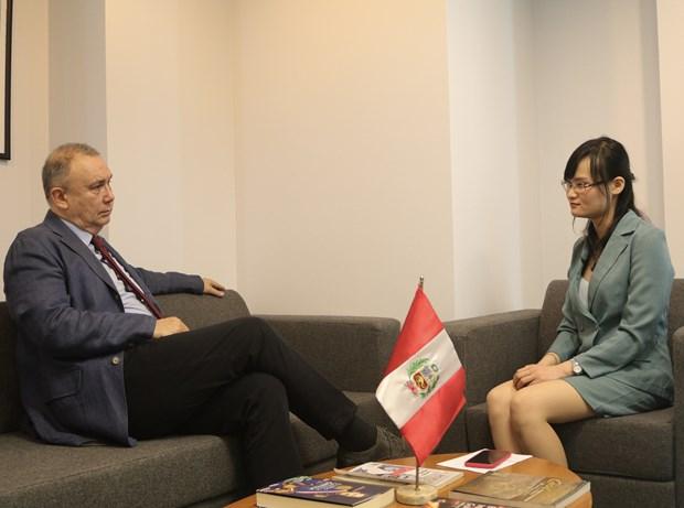 Embajador peruano valora posicion internacional de Vietnam hinh anh 2