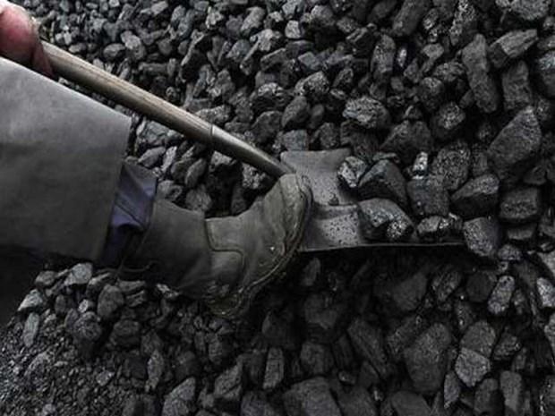 Exportaciones de carbon de Indonesia caen mas 30 por ciento en 2020 hinh anh 1