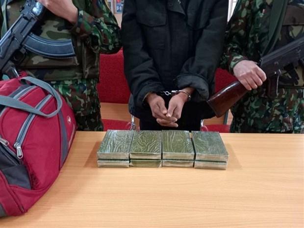 Arrestan a narcotraficante en provincia vietnamita de Nghe An hinh anh 1