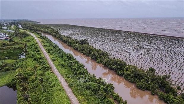 Agilizan desarrollo sostenible de delta del Mekong asociado con adaptacion al cambio climatico hinh anh 1
