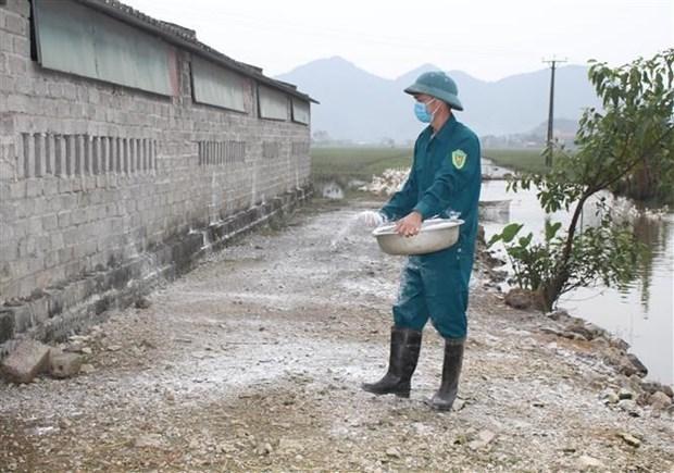 Primer Ministro vietnamita exhorta medidas drasticas para control de la gripe aviar hinh anh 1