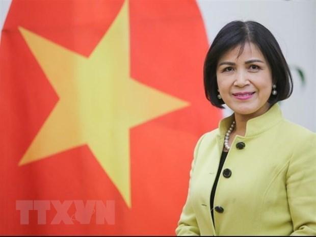 Respalda Vietnam papel del Centro del Sur en impulso de cooperacion entre pais en desarrollo hinh anh 1