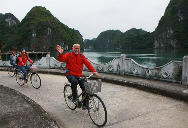 Pueblo apacible en Hai Phong atrae turistas hinh anh 1