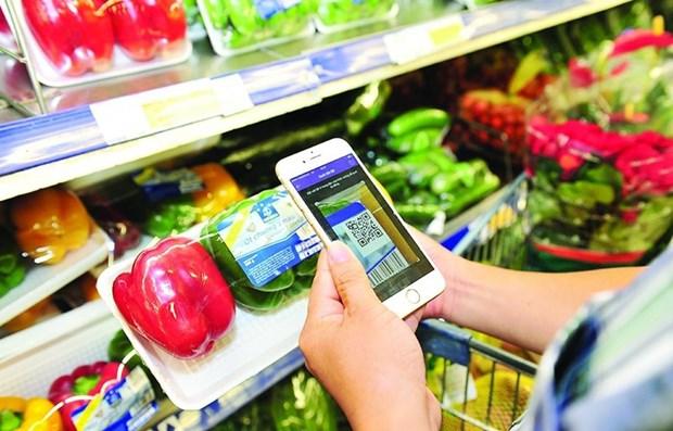 Destacan expertos internacionales potencial de la economia digital de Vietnam hinh anh 1