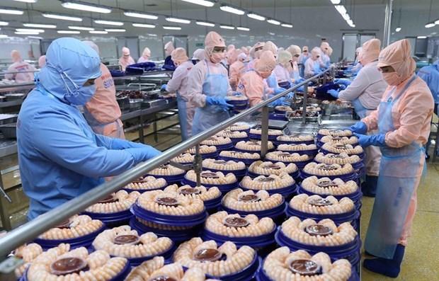 TLC con la Union Europea impulsa exportaciones agricolas de Vietnam a los Paises Bajos hinh anh 1