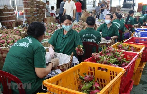 Provincia vietnamita trabaja por promover el desarrollo socioeconomico en 2021 hinh anh 2