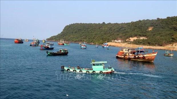 Vietnam emite nueva normativa sobre asignacion maritima hinh anh 1
