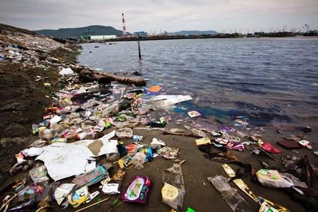 Indonesia y Japon fortalecen cooperacion para abordar problemas ambientales hinh anh 1