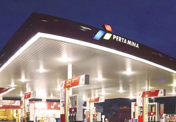 Indonesia por ser libre de importaciones de gasolina en 2030 hinh anh 1