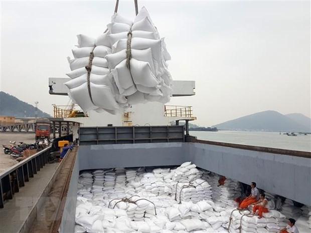 Destacan expectativas para exportaciones de arroz de Vietnam hinh anh 1