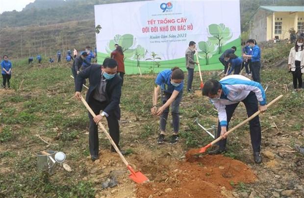 Lanzan Mes de la Juventud 2021 en Vietnam hinh anh 1