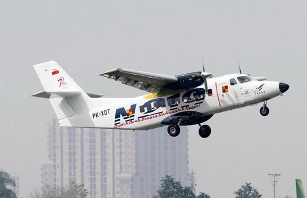 Indonesia lista para la produccion del avion utilitario N219 este ano hinh anh 1