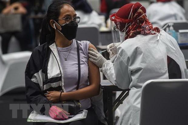 Indonesia aplicara vacuna contra el COVID-19 a empleados de hoteles y restaurantes hinh anh 1