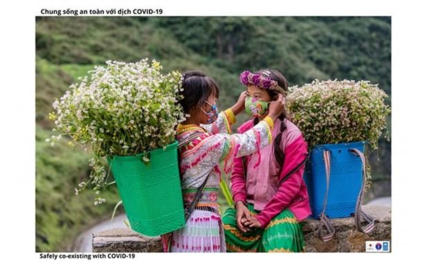 Imagenes resaltan esfuerzos de provincia vietnamita por desarrollar economia hinh anh 1