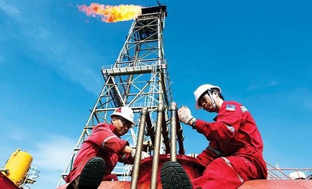Produccion de petroleo y gas de empresa vietnamita alcanza 5,4 millones de barriles hinh anh 1