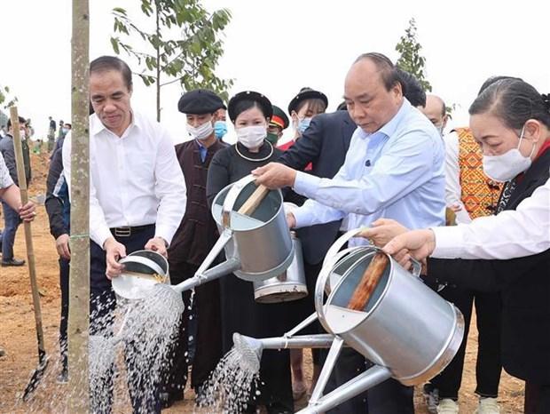 Primer ministro de Vietnam lanza campana de plantacion de arboles en ocasion del Tet hinh anh 1