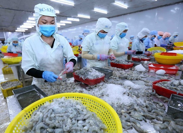 Vietnam espera una fuerte recuperacion del consumo de mariscos hinh anh 1