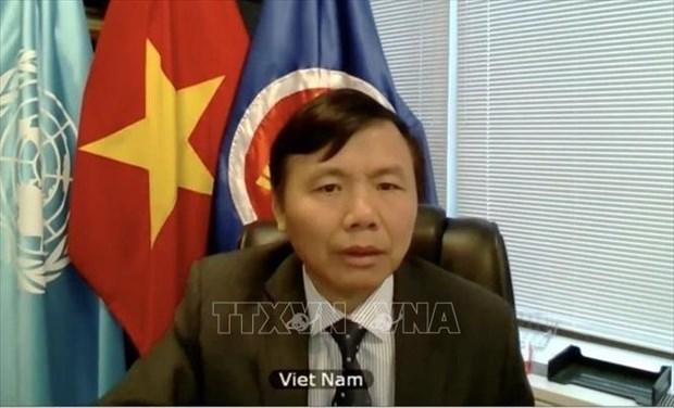 Vietnam insta a promover la Carta de la ONU para mantener la paz y seguridad internacional hinh anh 1
