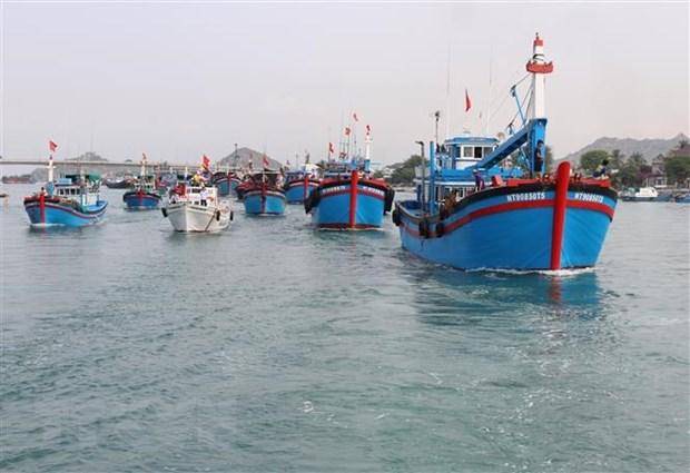 Provincia vietnamita busca avanzar con desarrollo de economia maritima hinh anh 1
