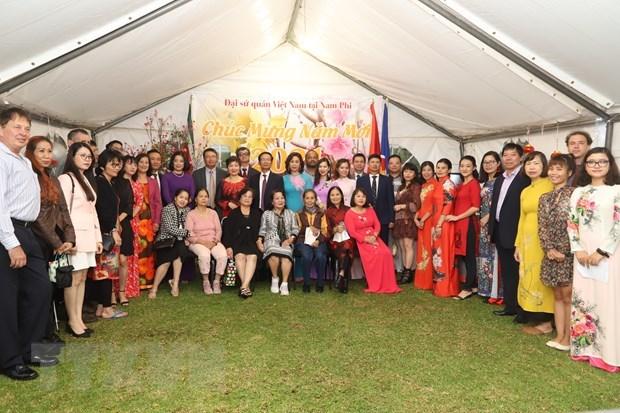 Organizan vietnamitas en Sudafrica ceremonia en saludo al nuevo ano hinh anh 1