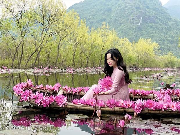 Sunny Vietnam, canal de Youtube destaca la belleza de Vietnam hinh anh 1