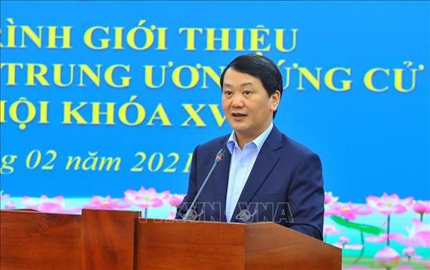 Elecciones de Asamblea Nacional de Vietnam: Oportunidades para los autonominados hinh anh 1