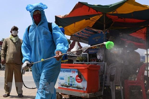 Camboya legaliza medidas preventivas contra el COVID-19 hinh anh 1