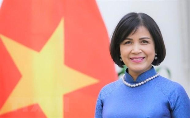 Vietnam participa en las negociaciones de OMC sobre subsidios a pesca hinh anh 1