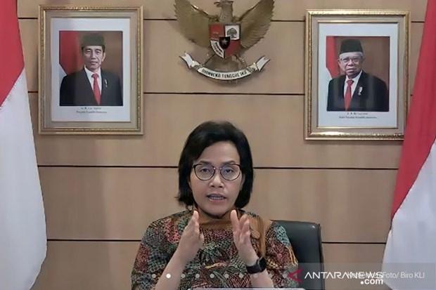 Indonesia fortalece la cooperacion internacional para recuperar la economia hinh anh 1