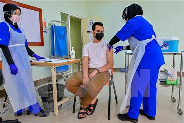 Proponen establecer un certificado de vacuna comun de la ASEAN hinh anh 1