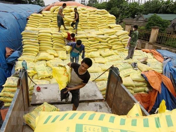 Vietnam decide imponer medidas de autodefensa a fertilizantes importados hinh anh 1