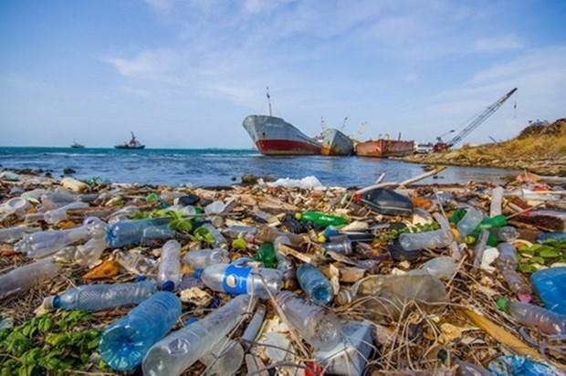 Vietnam busca lidiar con contaminacion por microplasticos hinh anh 1