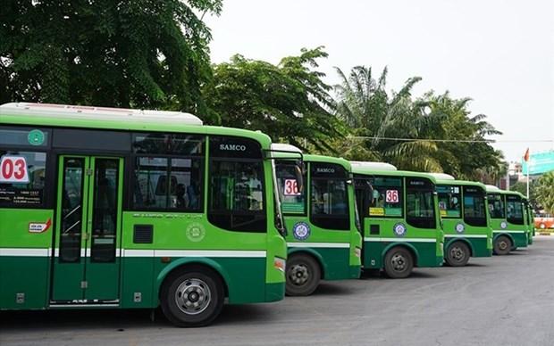 Impulsan aplicacion de la red de minibus en Ciudad Ho Chi Minh hinh anh 1