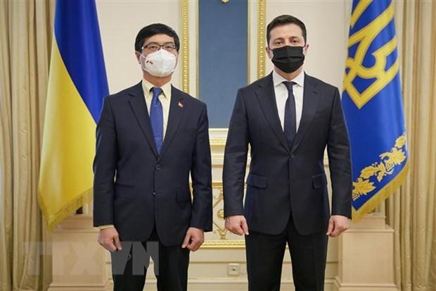 Presidente de Ucrania expresa deseo de impulsar cooperacion con Vietnam hinh anh 1