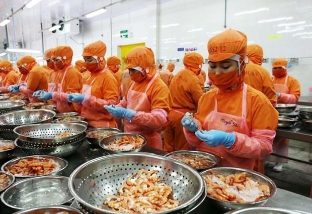 Aumentan exportaciones de provincia vietnamita de Kien Giang hinh anh 1