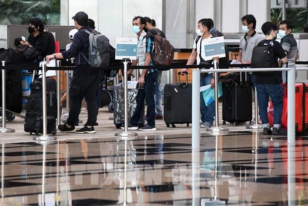Singapore Airlines probara nuevo pase de viaje digital de COVID-19 hinh anh 1