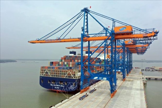 Fuerte aumento de carga de contenedores a traves de puertos de Ba Ria-Vung Tau hinh anh 1