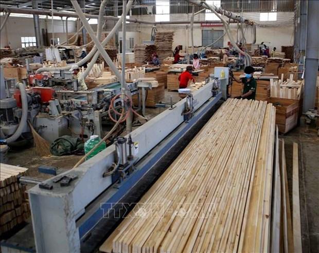 Vietnam: segundo exportador mundial de madera hinh anh 1